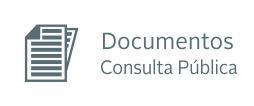 documentos consulta publica.